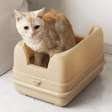 猫のトイレ寒い